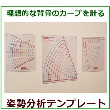 姿勢分析テンプレート